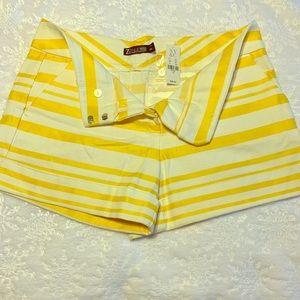 """Brand new NY&C 4"""" shorts"""